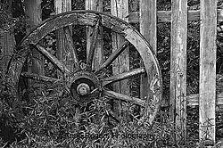 wheel-poster-bw-w.jpg