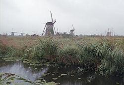windmills_web.jpg