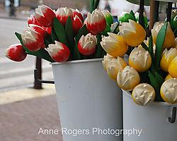 wooden_flowers-w.jpg