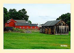 Barns2.jpg