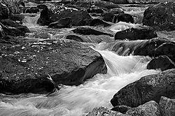 19248bear-lake-stream-bw.jpg