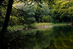 82847Hamori_lake.jpg
