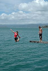 88128diving_contest.jpg