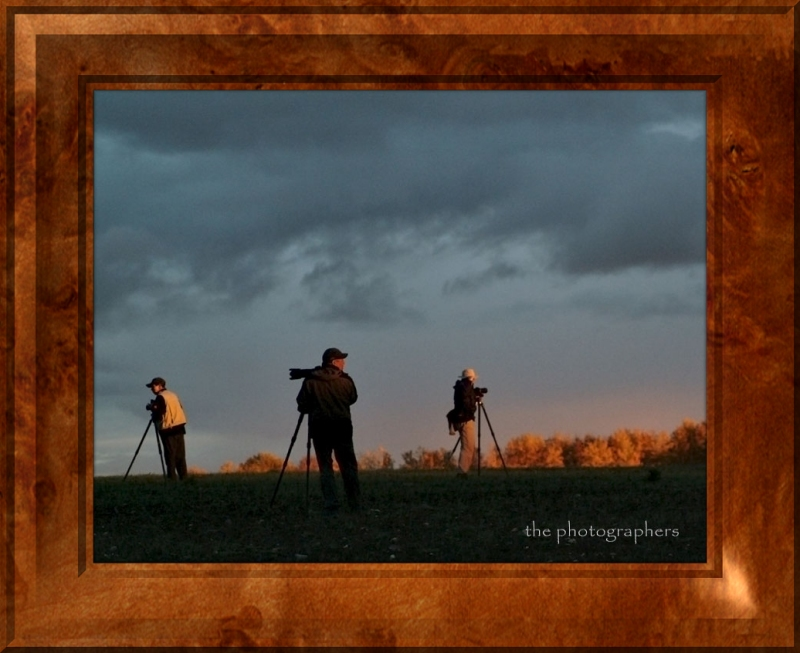 14020The_Photographers