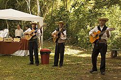 92152034-Iguacu-Falls.jpg