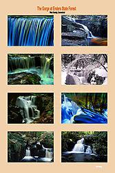 12017Gorge-in-Enders-Forest.jpg