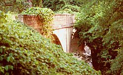 18180contested_bridge.jpg