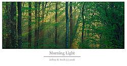 25107morninglight_copy2.jpg