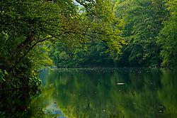 82847Hamori_lake1.jpg