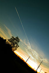 111173nikonians_night-path2.jpg