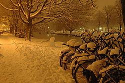 98259Amsterdam_Feb_2005_0279.jpg