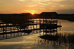 68410pawleys_creek_small.jpg