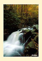 12017Little-River-Cascade.jpg