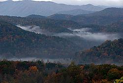 6509901_Fog_In_The_Valley.jpg