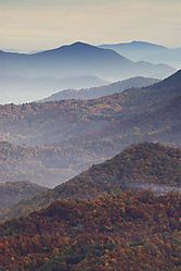 81192Early_Morning_Blue_Ridge_Parkway_2_DSC4093.jpg