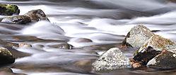 81192stones_in_water.jpg