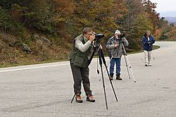 92152Nikonians-at-work-4.jpg