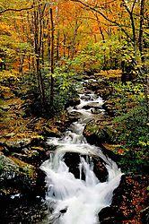 Smoky-mountain-stream.jpg