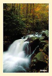 1201712017Little-River-Cascade_1_.jpg