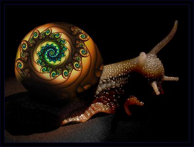 53699Psychedelic_Snail_Andrew_Cooper_Abstract_3