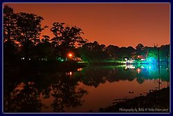 117042Midnight_At_The_Oasis.jpg