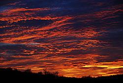 Desert_Sunset1.jpg