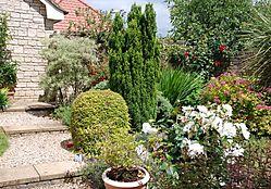 143836my_garden.JPG