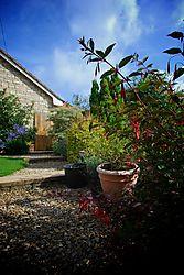 garden_path.jpg