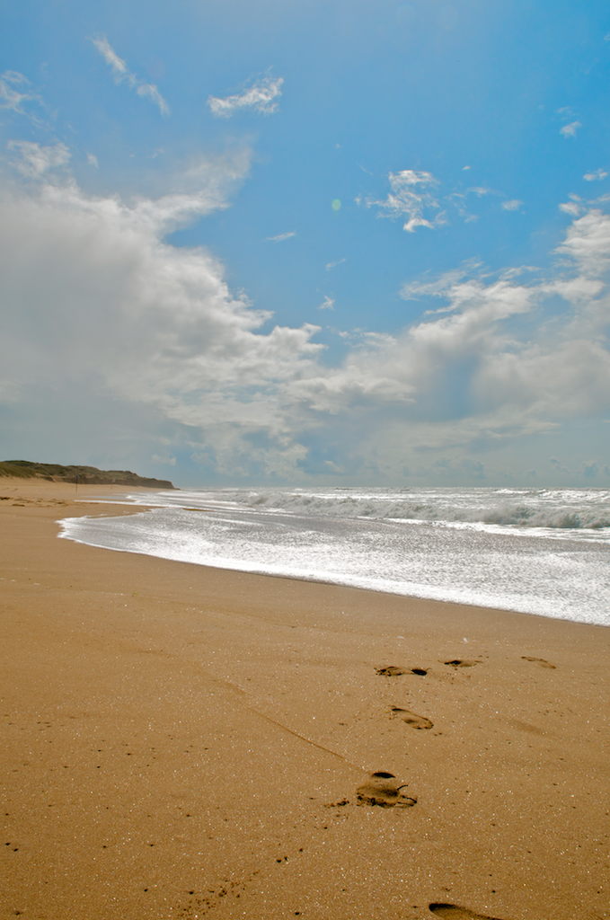 Beach_at_Jard_1_
