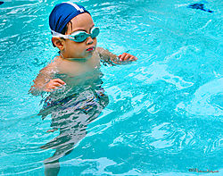 DSCN8741_swimmer3_sm.jpg