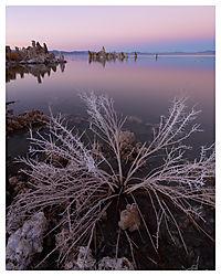 Mono-Lake-Sunset---by---Danai-Chutinaton.jpg