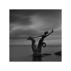 Sea-Horse.jpg