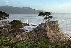 Cypress_Point.jpg