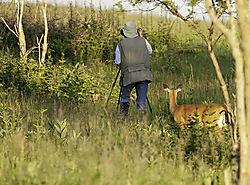 july_wildlife_PixiePixels01.jpg
