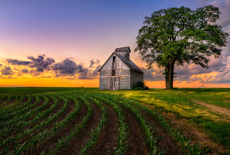 """Winner June Landscape   Theme: """"Early and Late Sidelit Images w/o Sun""""    """"Morton, IL Corn Crib""""    D800 