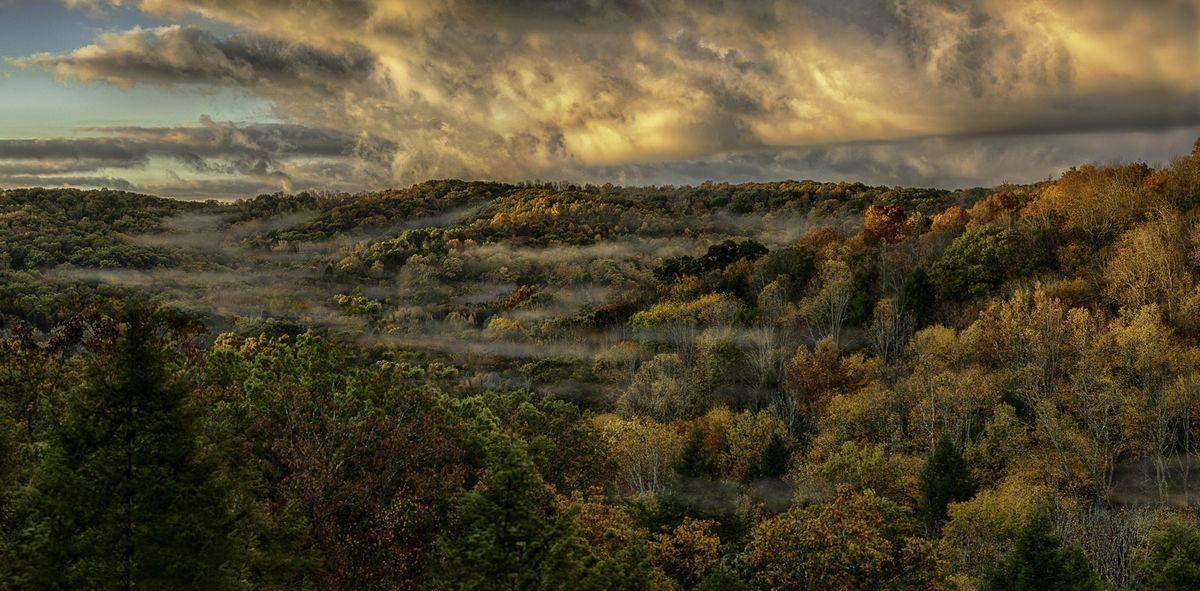 november_landscape_rosewood_ltd