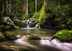april_landscape-bump57.jpg