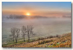 november_landscape_bump57.jpg
