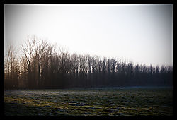 Freezing_069.jpg