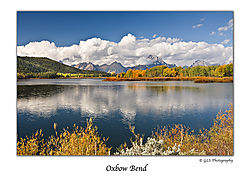 Oxbow_Bend_4_WEB.jpg