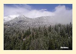 Teton-Pass1.jpg