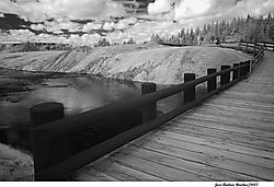 bridge_web.jpg