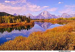 oxbow_bend_goldblue.jpg