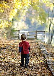 Fall_Walk.jpg
