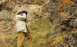 LichenPhotographer.jpg