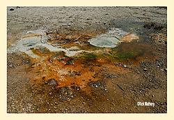 Upper-Geyser-Basin2.jpg