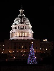 Capitol_Tree_1_pt_V2.jpg