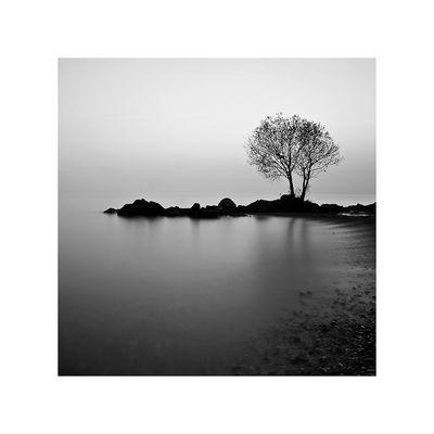 Lake Geneva © frederic Mottier (fmottier)