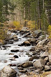 091018-Sierra-Bishop-Creek.jpg