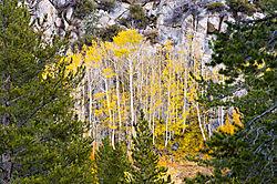 091018-SierraSouth-Lake.jpg